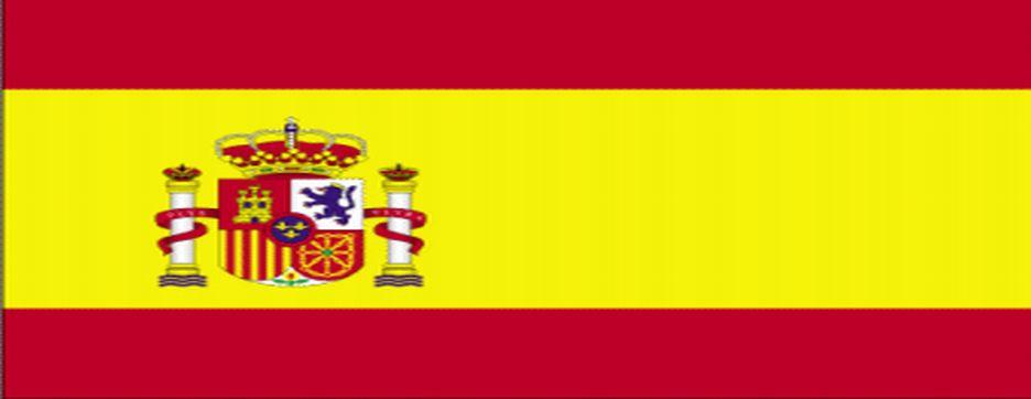 vergangenheit spanisch tener