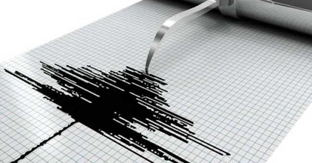 Σεισμική δόνηση με μέγεθος 4.3 στην κλίμακα Ρίχτερ κατέγραψε στις 02:08 ώρα Ελλάδος, το σεισμολογικό δίκτυο, όπως ανακοινώθηκε από το Γεωδυναμικό Ινστιτούτο του Εθνικού Αστεροσκοπείου Αθηνών.