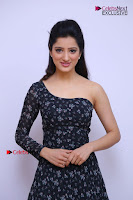 Telugu Actress Richa Panai Stills in One Shoulder Floral Long Dress at Rakshaka Bhatudu Movie Interview  0082.JPG
