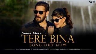 Tere Bina: Salman Khan Song English/Hindi lyrics idoltube –