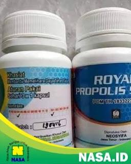 Royal Propolis Syifa 60 Kapsul