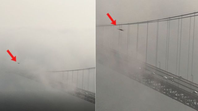 UFO News ~ UFO moving across the Golden Gate Bridge at tremendous speeds plus MORE Ufo-fastwalker-uap%2Bgolden-gate-bridge