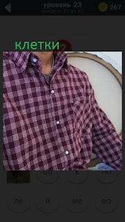 470 слов. все просто на мужчине одета рубашка в клетку 23 уровень
