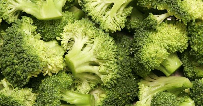15 Makanan Sehat Untuk Penderita Kanker Tulang yang alami