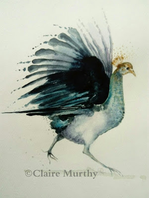 peacock in watercolours