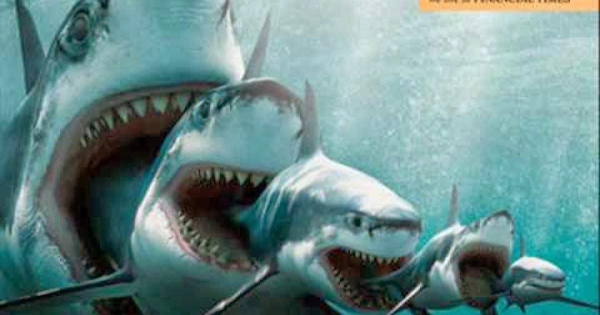 Latest Sports Cars 2014 Wallpaper Megalodon Monster Shark Hd Wall Wallpapers Hd Wall