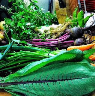 6 Julho, 14:30h:  Introdução à Alimentação Viva, Consciente e Orgânica