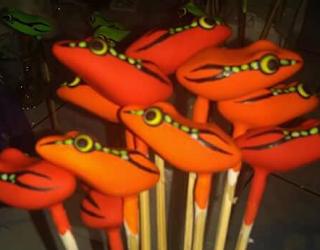 jenis jenis soft frog