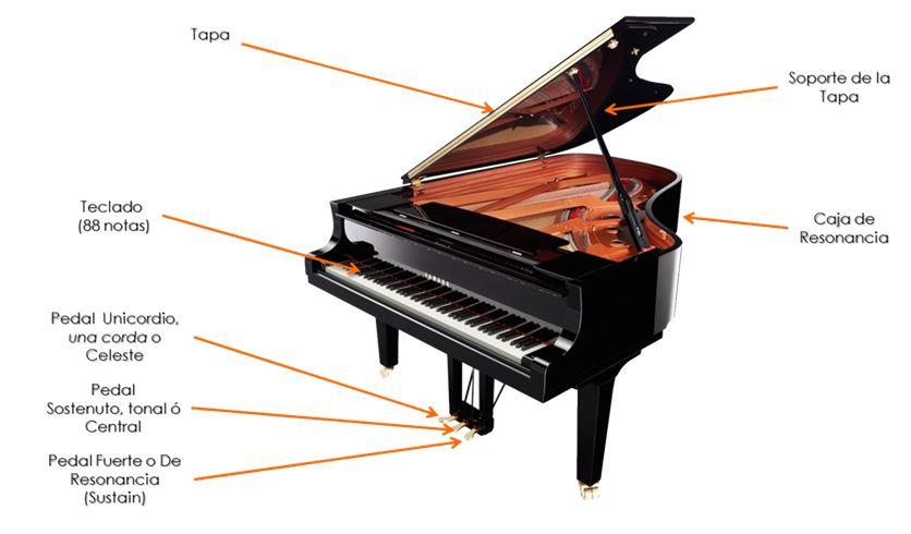 Lecciones De Piano Introducción Al Piano