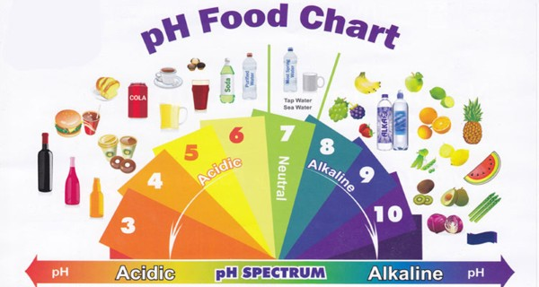 The Top 27 Alkaline Foods