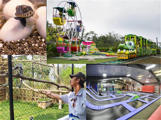 Siapa bilang buaya menakutkan, yuk kunjungi Predator Fun Park
