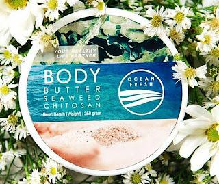 Body Butter Seaweed Chitosan Tekstur Dan kemasan