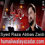 https://www.humaliwalyazadar.com/2018/09/syed-raza-abbas-zaidi-nohay-2019.html