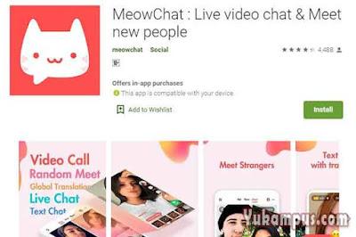 meowtalk aplikasi biro jodoh