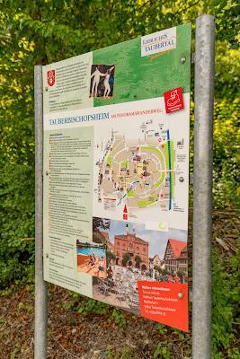 Panoramaweg Taubertal Etappe 3 Tauberbischofsheim - Bad Mergentheim 04
