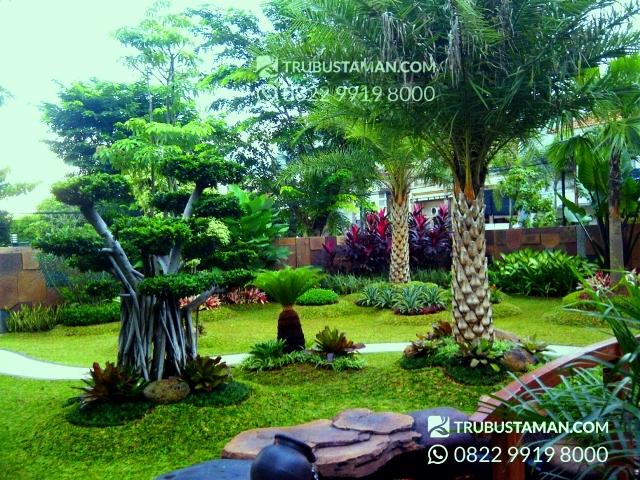 Tukang Taman Jakarta - jasa tukang taman di jakarta