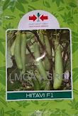 terong hijau, terung, tanaman terong, jual benih terong, toko pertanian, toko online, lmga agro