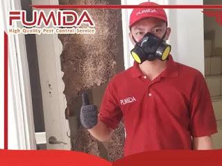 layanan jasa anti rayap fumida