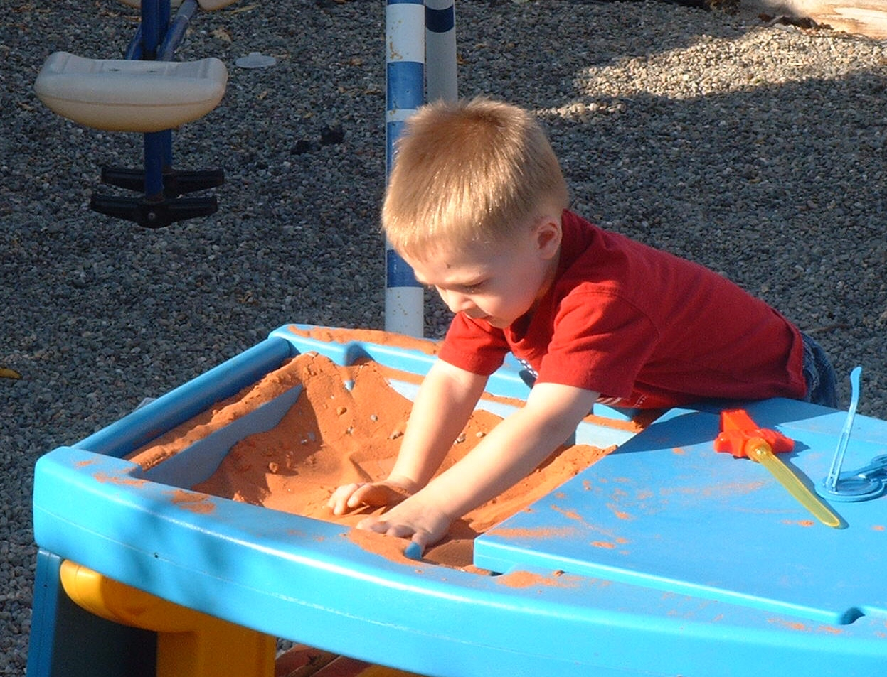 Topics in Early Childhood Education