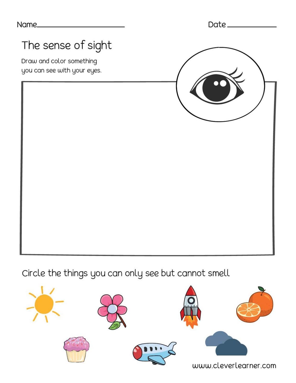 English Time 5 Senses Project