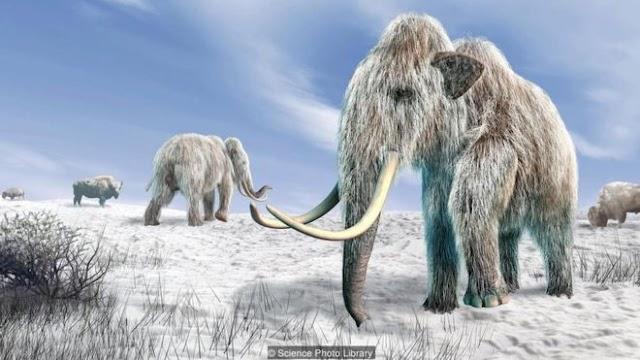 A possibilidade cada vez mais real de termos zoológicos de animais extintos