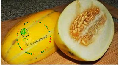 বাঙ্গি ফল, বাঙ্গির উপকারিতা, বাঙ্গি ফলের উপকারিতা, বাঙ্গি খাওয়ার উপকারিতা, বাঙ্গি চাষ পদ্ধতি, বাঙ্গির রস, বাঙ্গির শরবত, বাঙ্গির জুস,The benefits of eating melons, melons, and fruits.
