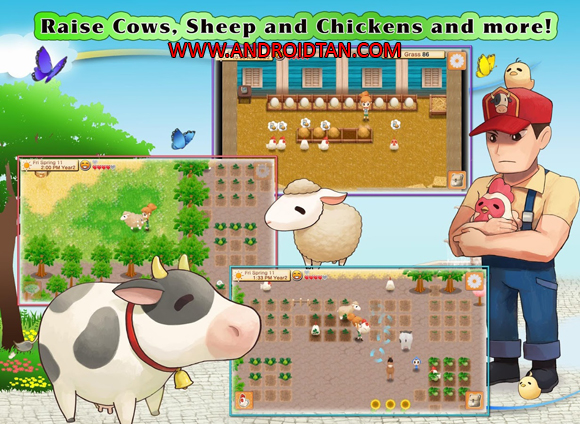 Fitur Game Harvest Moon Seeds Of Memories Apk