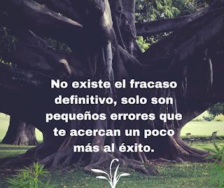No existe el fracaso definitivo, solo son pequeños errores que te acercan mas al éxito.