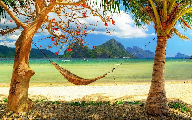 Hangmat tussen twee bomen op het strand