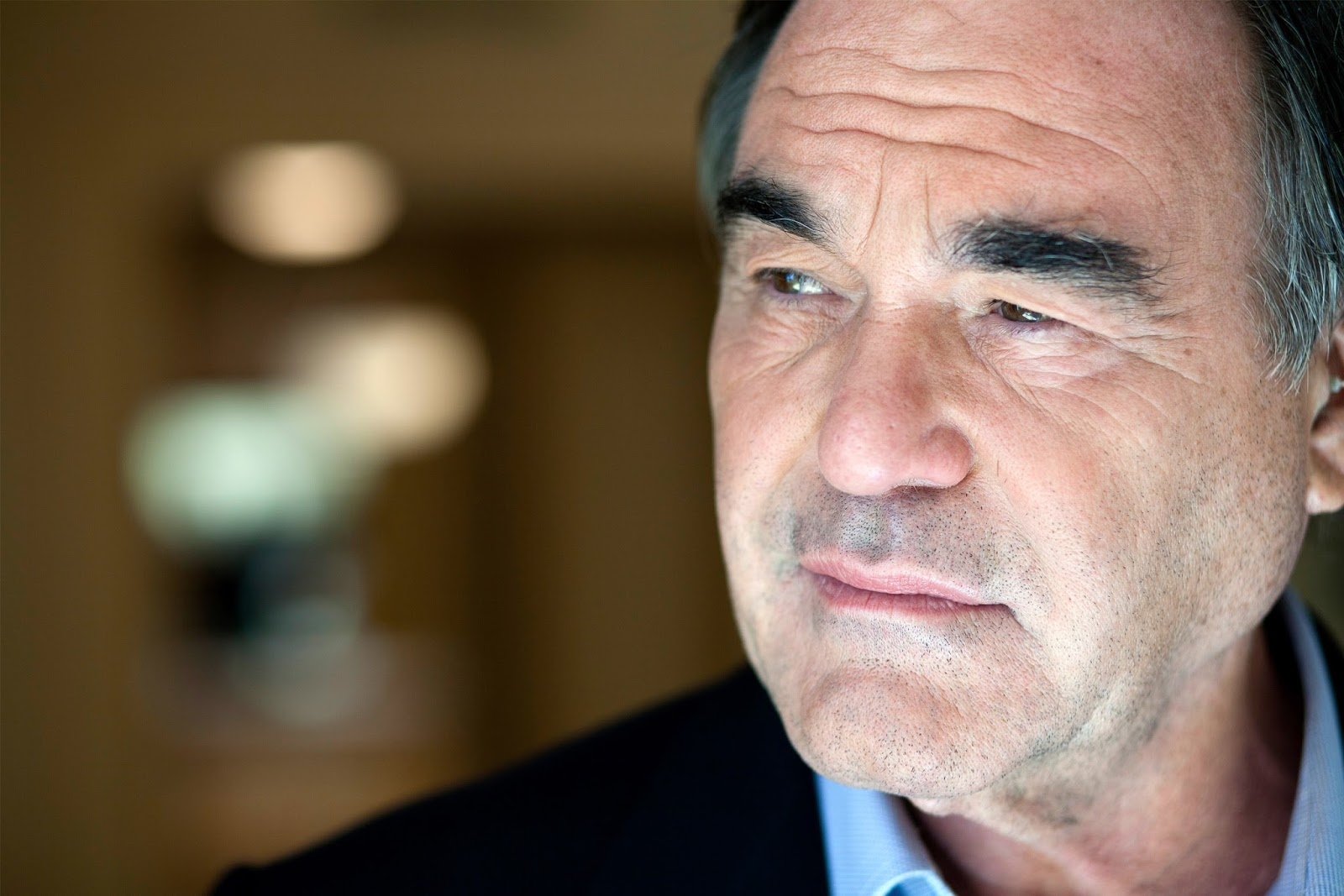 oliver stone jfk essay The best books about the jfk assassination, from norman mailer to don delillo will the release of the latest cache of classified papers oliver stone's film jfk.
