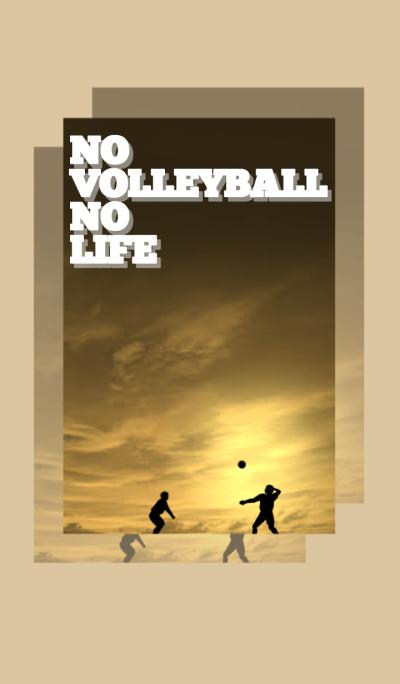 No Volleyball No Life