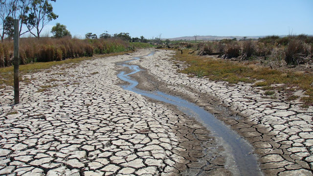 Droughts are threatening global wetlands