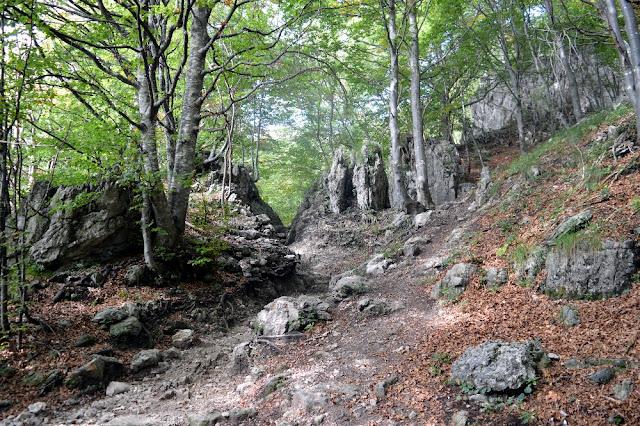 escursioni trekking passeggiate valle imagna