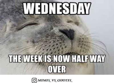 Half Wednesday