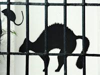 Sombra de gato enfadado ¿Te Animas?
