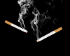 4 tips for lighting a cigar