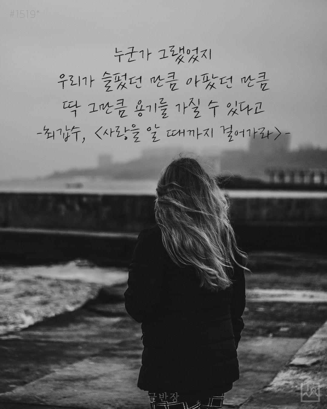 우리가 슬펐던 만큼 아팠던 만큼 딱 그만큼 용기를 가질 수 있다 - 최갑수, <사랑을 알 때까지 걸어가라>
