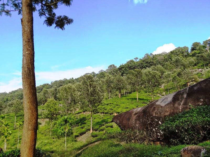 beautiful clear blue sky in Kerala