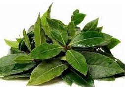 Cara Mengobati Asam Urat Secara Alami dengan Tanaman Herbal Ampuh
