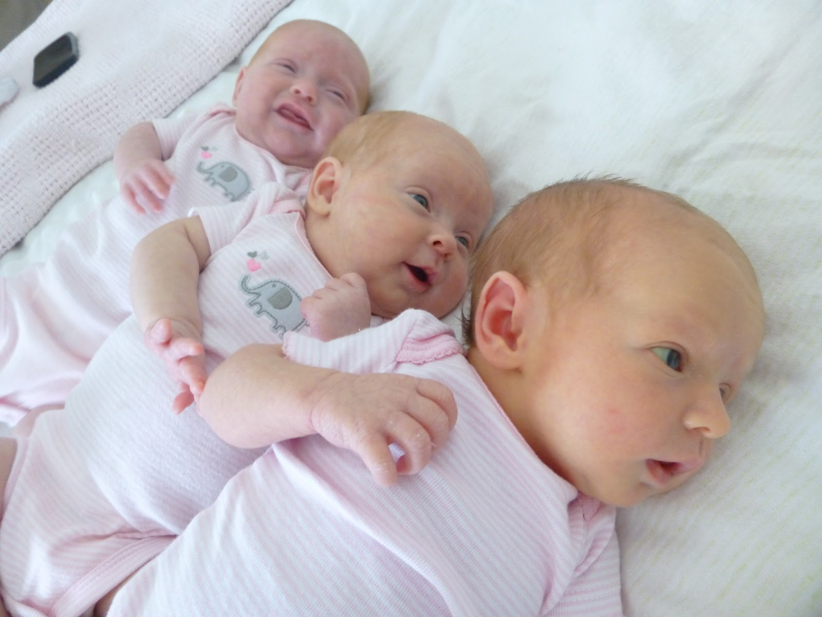 Koleksi Foto Lucu Bayi Kembar Kantor Meme