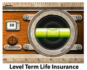 What Is Level Term Life Insurance Exactly?   Life ...