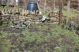 weeding, gardening