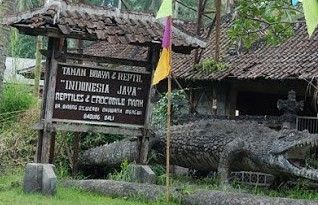 http://www.teluklove.com/2017/02/pesona-keindahan-wisata-rimba-reptil.html