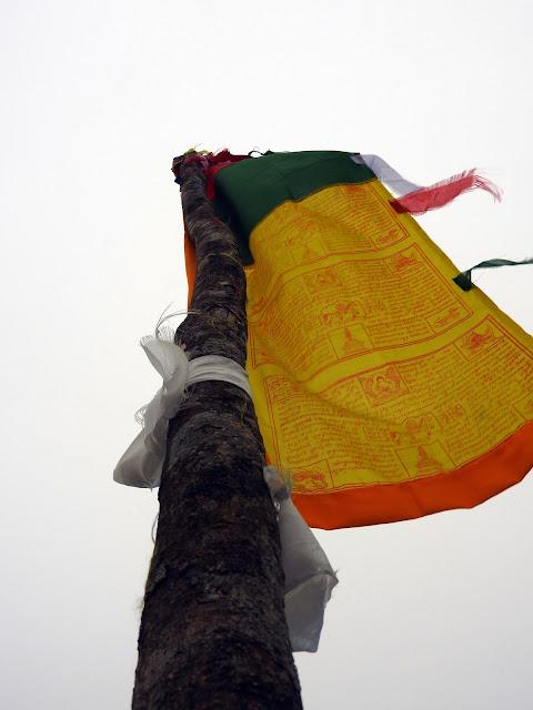 Prayer flags | Sandakphu - April 2016