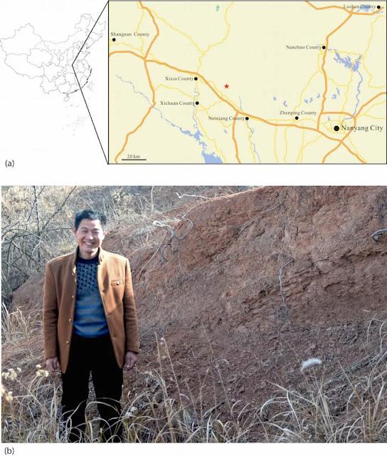 Una mappa (in alto) mostra Nanyang, una città della provincia cinese di Henan. La stella segna il sito fossile dove Zhang Fengchen (in basso) ha trovato e raccolto il fossile nel dicembre 1992 e all'inizio del 1993.