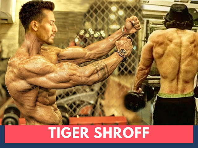 Tiger Shroff Body In Baaghi 2 Movie