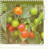 Bode (Capsicum chinense)