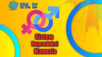 sistem reproduksi manusia ipa biologi kelas 9