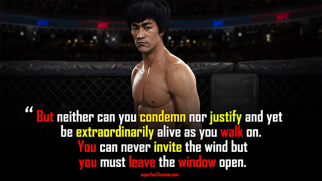 But neither can you condemn nor justify and yet be extraordinarily alive as you walk on. You can never invite the wind but you must leave the window open.