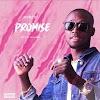 MUSIC: Ayovic – Promise